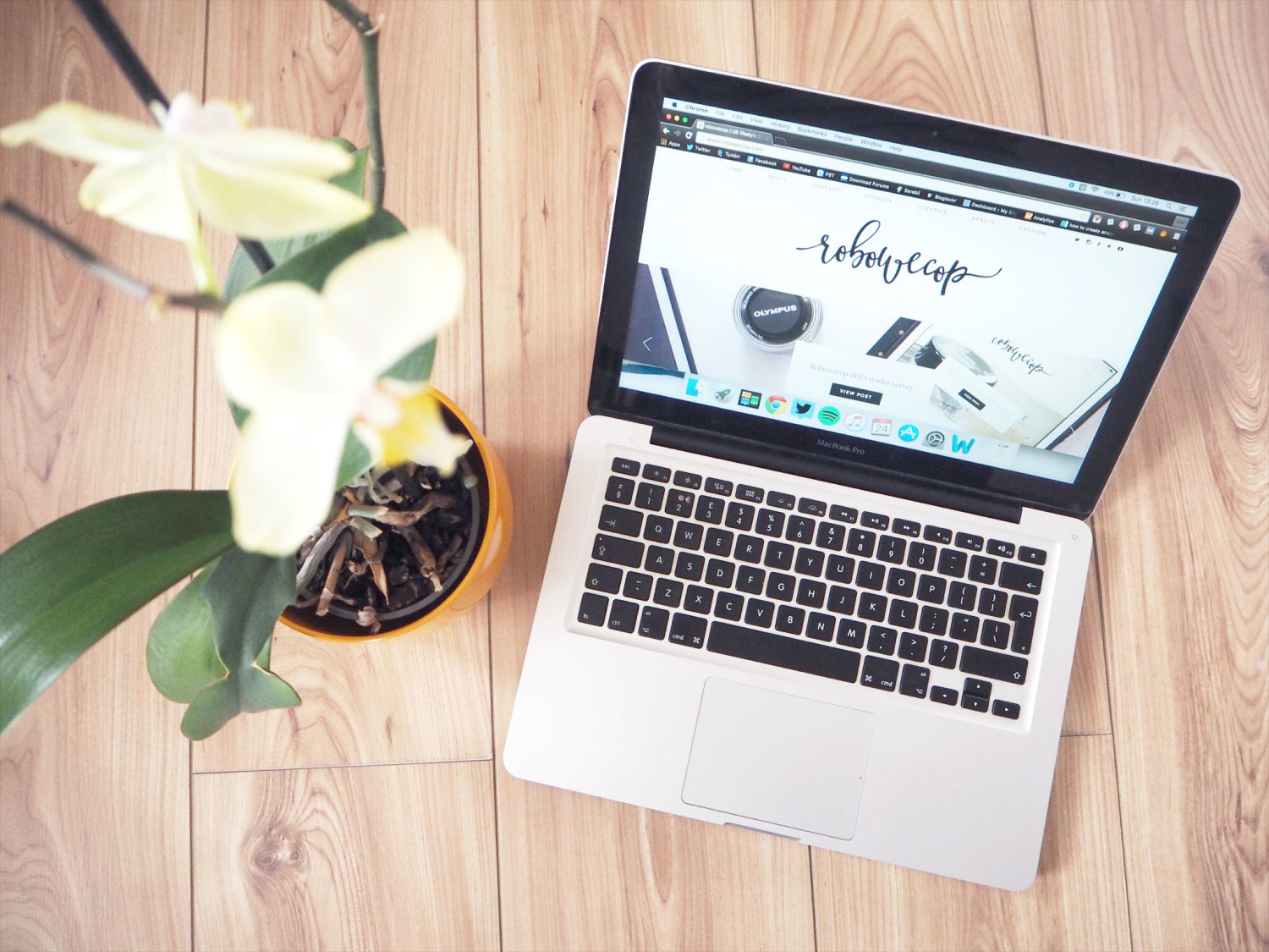 What to include in a blog media kit | robowecop