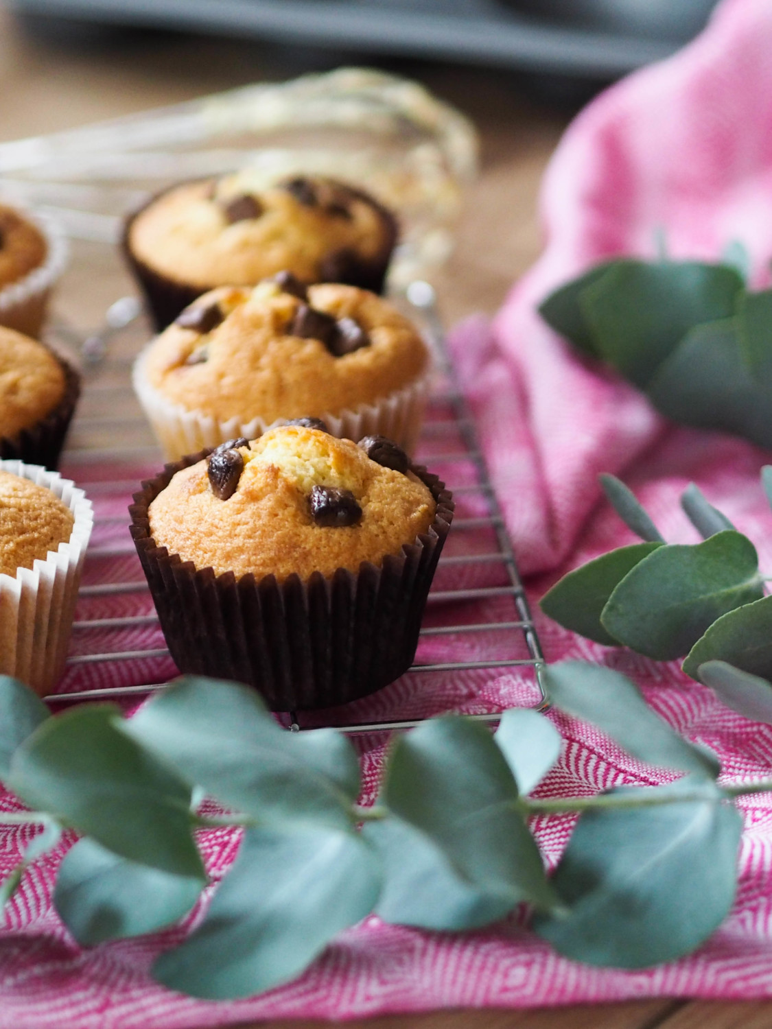 The easiest chocolate chip cupcakes recipe ever
