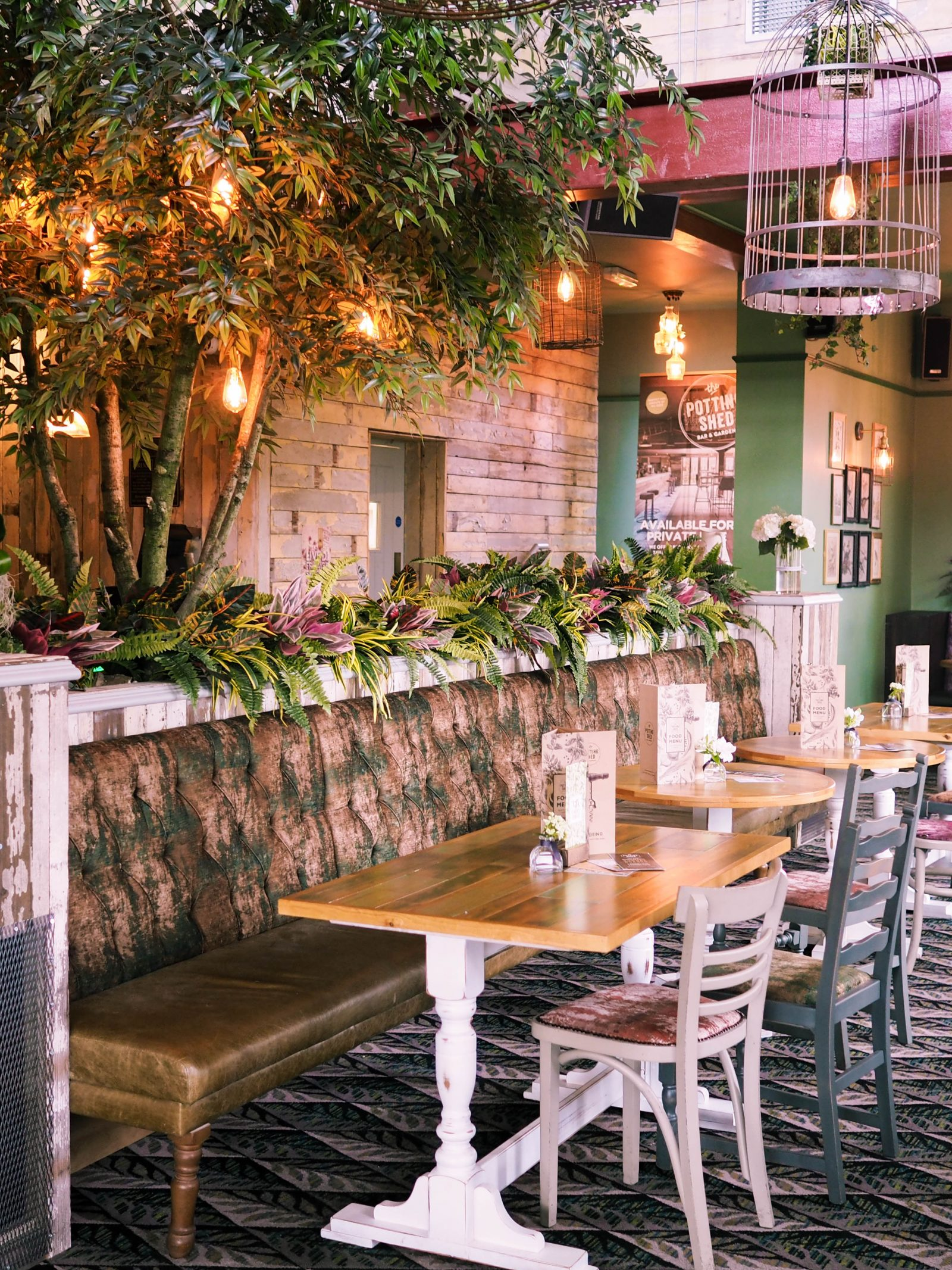 The potting shed guiseley | rhianna olivia